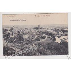 Golub-Dobrzyń - pozdrowienia panorama