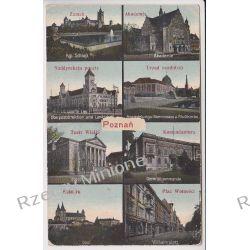 Poznań - mozaika