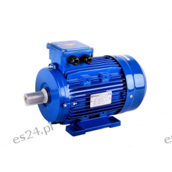 silnik elektryczny 4 kW 380V 2880rpm