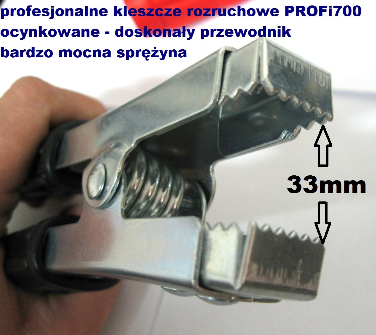 https://img.bazarek.pl/717445/21956/9232310/89896973859df942a68334.jpg