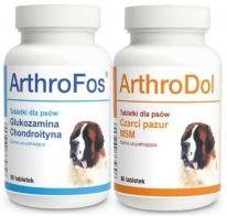 Arthrofos 90 tab. Arthrodol 90 tab. (180tab.)