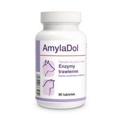 AMYLADOL 90 tabletek