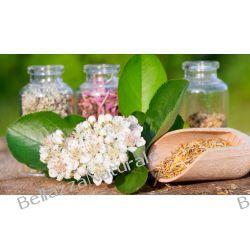 Odchudzanie herbatka ziołowa Barbary Biernackiej