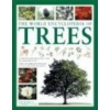 The World Encyclopedia of Trees Russell Tony Cutler Catherine