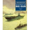 The Eclipse of the Big Gun The Warship 19061945