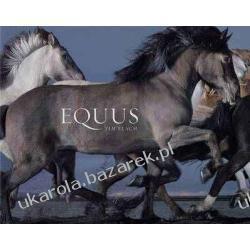 Equus  Tim Flach horses konie Projektowanie i planowanie ogrodu