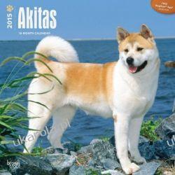 Kalendarz Akitas 2015 18-Month Calendar Projektowanie i planowanie ogrodu