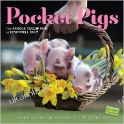 Kalendarz Pocket Pigs 2015 Wall Calendar