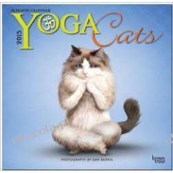 Kalendarz Yoga Cats 2015 Wall Calendar