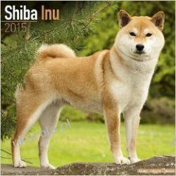 Kalendarz Shiba Inu Calendar 2015 Projektowanie i planowanie ogrodu
