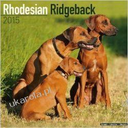 Kalendarz Rhodesian Ridgeback (Square) 2015 Calendar Projektowanie i planowanie ogrodu
