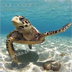 Kalendarz Nasze Oceany Our Oceans 2016 Calendar  Morze ocean woda