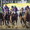 Kalendarz Horse Racing 2018 Calendar Wyścigi Konne
