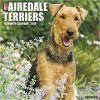 Kalendarz Airedale Terriers 2018 Calendar