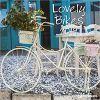 Kalendarz Rowery Lovely Bikes 2019 Calendar