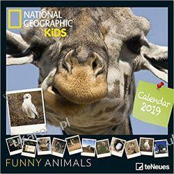 Kalendarz Śmieszne Zwierzęta National Geographic Kids: Funny Animals 2019 Calendar