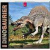 Kalendarz Dinozaury Dinosaurs 2019 Calendar