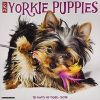 Kalendarz Just Yorkie Puppies 2019 Wall Calendar