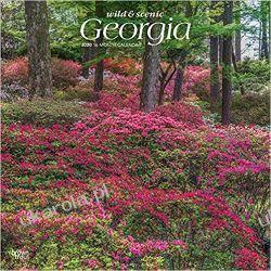 Kalendarz Wild & Scenic Georgia 2020 Calendar