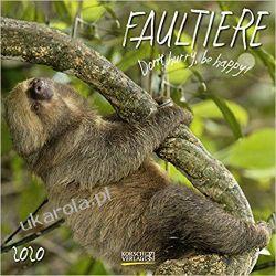 Kalendarz Leniwce Sloths 2020 Calendar