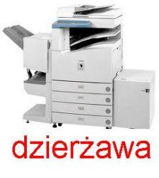 Dzierżawa