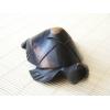 zółwik hebanowy