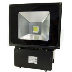 LED line Oprawa lampa naświetlacz halogen Led 100W barwa zimna